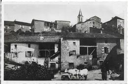 LA ROCHE VINEUSE Vieilles Maisons - Other Municipalities