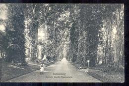 Nederlands Indië - Buitenzorg - 1910 - Netherlands