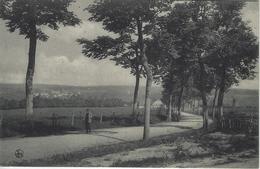 Bords De La Semois   -   La Route De Lacuisine   -   1913   Florenville   Naar   Gand - Florenville