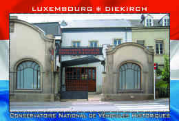 Carte Postale, REPRODUCTION, Diekirch (10), Luxembourg - Musées