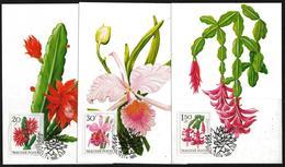 Hungary 1965 Maximum Cards (3 Scan) Cactus Flowers - Hungary