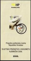 Croatia 2006 / Football World Cup - Germany / Prospectus, Leaflet, Brochure - Croatie