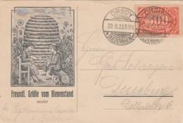 Deutsches Reich Postkarte Werbung 1920-23 - Allemagne