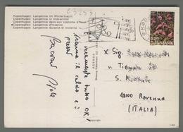 C3253 DANMARK Postal History FLOWERS - Lettere