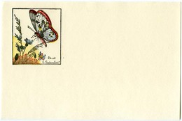 Buvard 21.2 X 13.3  Sans Publicité Image D'Epinal  Devinette 3  Où Est Le Naturaliste?  Papillons Fleurs - Buvards, Protège-cahiers Illustrés