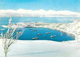 Norge: Narvik Vinter Malmbater Pa Havna (Nordway: Winter Time At Narvik, Tramp-ships At The Fjord) - Norway
