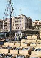 SAINT JEAN DE LUZ Le Déchargement Des Sardines Sur Le Port Au Fond La Maison De L'Infante Colorisée RV - Saint Jean De Luz