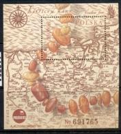 Poland 1993 Amber MS MUH - 1944-.... Republic