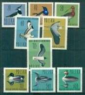 Poland 1964 Birds MLH - 1944-.... Republic