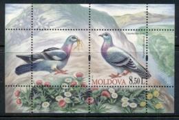 Moldova 2010 Birds MS MUH - Moldova