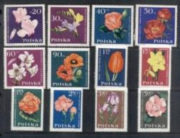 Poland 1964 Flowers MLH - 1944-.... Republic