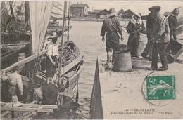 CARTE POSTALE°   HONFLEUR 14  Débarquement De La Moule - Honfleur
