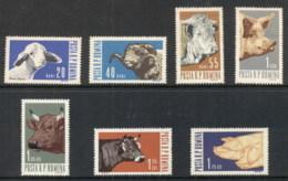 Romania 1962 Farm Animals MUH - 1948-.... Republics