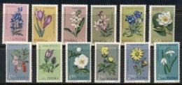 Poland 1962 Flowers MUH - 1944-.... Republic