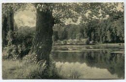 CPA - Carte Postale - Belgique - Le Rouge Cloître Et La Drève - Forêt De Soigne - 1919 ( DD7283) - Oudergem - Auderghem