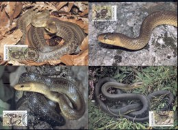 Moldova 1993 WWF Aesculapian Snake Maxicards - Moldova