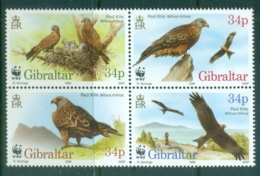 Gibraltar 1996 WWF, Birds, Red Kite Blk4 MUH - Gibraltar