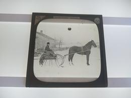 HORSESLIDE   CANADA   Plaque De Verre GLASS SLIDE CIRCA EARLY 1900 - Diapositivas De Vidrio