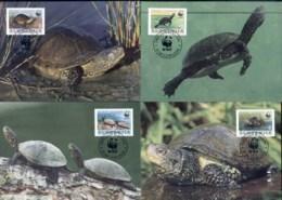 Slovenia 1996 WWF European Pond Tortoise Maxicards - Slovenia