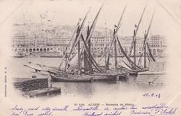 ALGER - Bateaux De Pêche - Fishing Boats