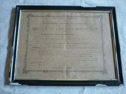 ANCIEN BREVET DE LANGUES ORIENTALES INDOCHINE 1906 ENCADRE - Diploma & School Reports