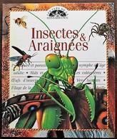 LIVRE ILLUSTRE - LES CLES DE LA CONNAISSANCE - 17 - Insectes Et Araignées - Autres
