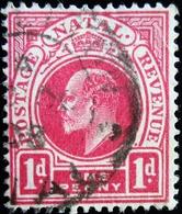 1902 Natal Mi 59, Yt 58 .King Edward VII  . Oblitéré Used - Natal (1857-1909)