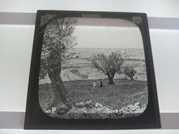 HOLY LAND  BIBLE LANDS   JERUSALEM FROM OLIVET  Plaque De Verre GLASS SLIDE CIRCA EARLY 1900 - Diapositivas De Vidrio
