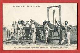 CPA CAMPANA DE MELILLA 1909 - N°65 Campamento Del Hipodromo Ganado Del 1° De Montana Abrevando - Melilla