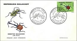 Madagascar 1966 - FDC - Insect ( Mi 549 - YT 421 ) - Madagascar (1960-...)