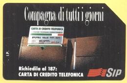 Scheda Telefonica - ITALIA - ITALY - ITALIE - 30.06.95 - Compagna Di Tutti I Giorni, Carta Di Credito Telefonica - SIP 1 - Pubbliche Ordinarie