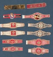 CORONA 12 Bagues De Cigare Dont 9 Différentes - Cigar Bands