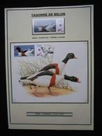 ANDRE BUZIN  SOUVENIR A4 - 1985-.. Birds (Buzin)