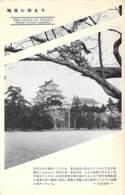 JAPON Japan - NAGOYA : The Castle From Outer Garden - CPA - Giappone Japão - Nagoya