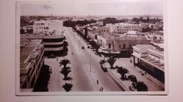 Morocco, Maroc - Meknès - Avenue Mezerges - 1942 [TM/Lpt100e] - Meknes