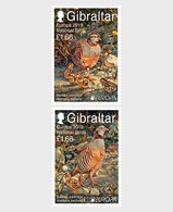 H01 Gibraltar 2019 Europa 2019 - National Birds  MNH Postfrisch - Gibraltar
