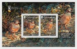 H01 Gibraltar 2019 Europa 2019 - National Birds Miniature Sheet  MNH Postfrisch - Gibraltar