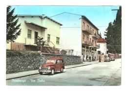 CT--02759-- MERCURAGO(NOVARA)- VIA ITALIA -AUTO EPOCA(FIAT BELVEDERE)-SALUTI DA MERCURAGO-VIAGGIATA 1964 - Altre Città