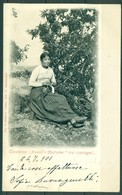 CARTOLINA - CV432 AREZZO Casentino, Costume Tra I Castagni, FP Viaggiata 1901, Ottime Condizioni - Arezzo