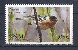 SP&M (2019) Uccelli/birds/oiseaux: Paruline à Poitrine Baie/Bay-breasted Warbler; Single Stamp (MNH) - As Scan - Moineaux