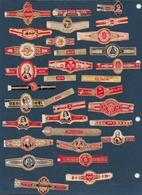 Lettre A    33 Bagues De Cigare Différentes - Cigar Bands
