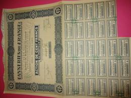 Action  De 100 Francs Au Porteur Entièrement Libérée/Tanneries De France  /Paris /1928    ACT226 - Industrie