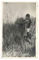Cpa Bangui ( A.E.F. ) - Chasseur Pygmé , éditeur Pauleau - Cartes Postales