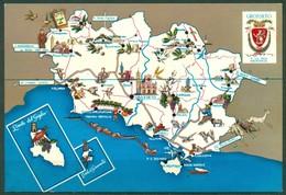 CARTOLINA - CV1737 GROSSETO (GR) Cartina Della Provincia, FG, Non Viaggiata, Ottime Condizioni - Grosseto