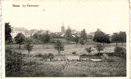 DENéE  Le Panorama. - Anhée