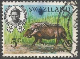 Swaziland. 1968 Animals. 5c Used. SG 165 - Swaziland (1968-...)