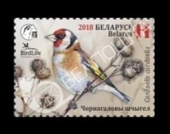 Belarus 2018 Mih. 1243 Fauna. Bird Of The Year. European Goldfinch MNH ** - Belarus