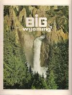 WYOMING (BIG WYOMING) - LIVRE (GUIDE TOURISTIQUE) - Esplorazioni/Viaggi