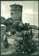 CARTOLINA - CV1697 ISOLA DEL GIGLIO (Grosseto GR) Torre Del Campese, FG, Viaggiata 1958, Ottime Condizioni - Grosseto