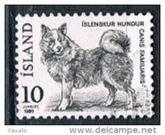 Iceland 1980 - Fauna Dog - 1944-... Republik